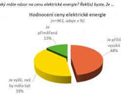 Veřejnost a elektřina 2013